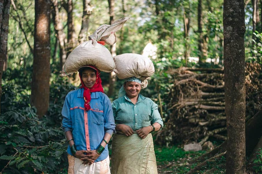 The Process Behind Building A Global Specialty Coffee And Craft Bakes Brand Out Of South Asia